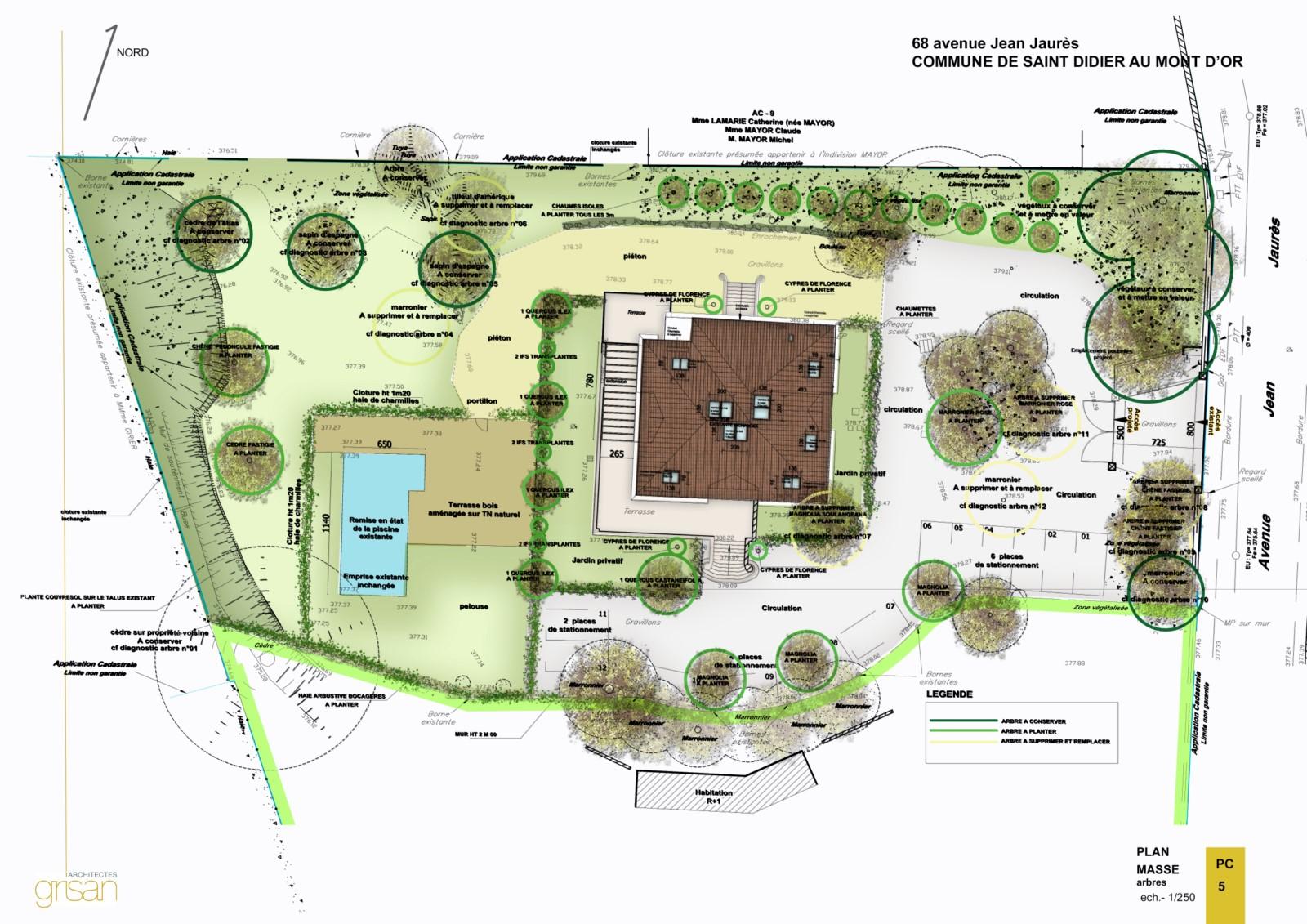 Plan de masse - Réhabilitation prestige - Saint Didier au Mont d'Or